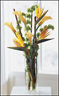 Tropicala Bouquet from Arthur Pfeil Smart Flowers in San Antonio, TX