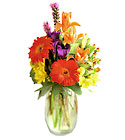 Festival of Color Bouquet from Arthur Pfeil Smart Flowers in San Antonio, TX
