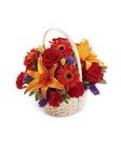 Fun in the Sun Basket from Arthur Pfeil Smart Flowers in San Antonio, TX