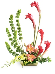 Touch of Tropics Arrangement from Arthur Pfeil Smart Flowers in San Antonio, TX
