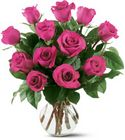 12 Hot Pink Roses from Arthur Pfeil Smart Flowers in San Antonio, TX