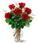 6 Red Roses from Arthur Pfeil Smart Flowers in San Antonio, TX