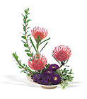 Pin Cushion Protea Bowl from Arthur Pfeil Smart Flowers in San Antonio, TX