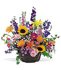 Summertime Sensation Basket from Arthur Pfeil Smart Flowers in San Antonio, TX