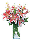 Lovely Lilies from Arthur Pfeil Smart Flowers in San Antonio, TX